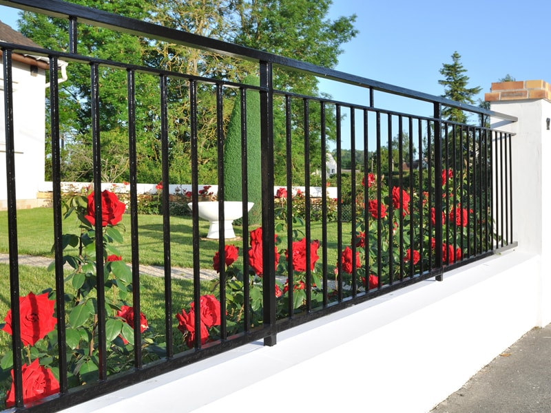 Black Metal Fence Handrail With Red Roses In The Background