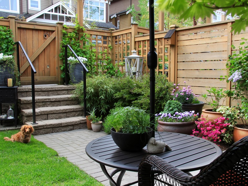 Townhouse Backyard Area with Custom Fence and gate Many Potted Plants and Table and Chair