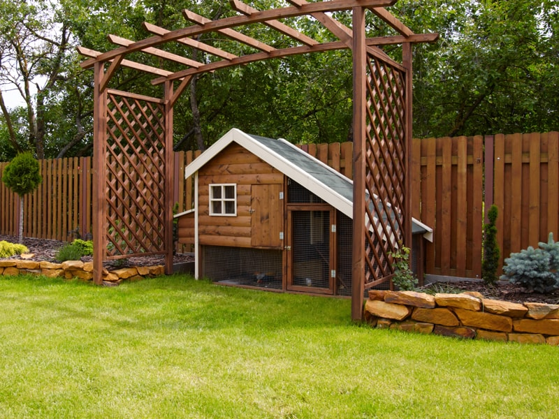 Stained Privacy Fence With Matching Custom Pergola and Chicken Coup in a Landscaped Backyard.