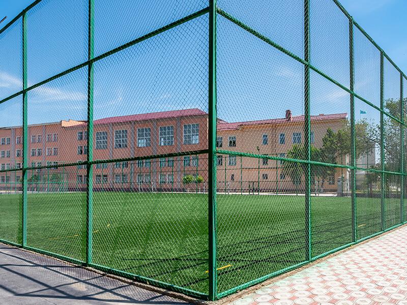 athletic fencing